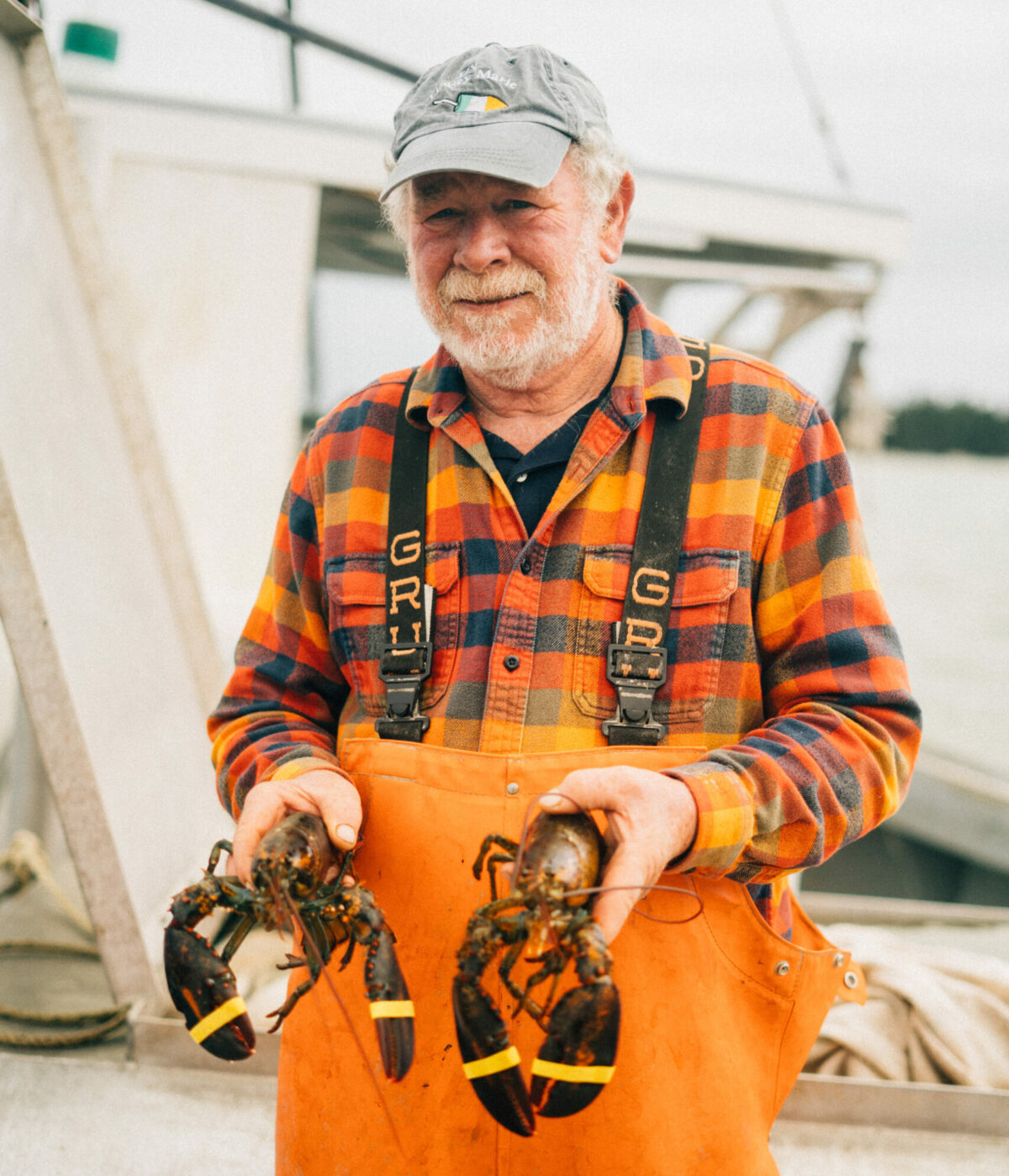 A scallop farmer holding two lobsters.